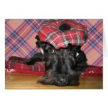 Scottish Terrier in a Tam-o-Shanter Greeting Card