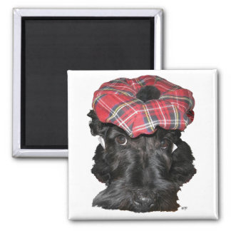 Scottish Terrier in a Tam-o-Shanter Square Magnet
