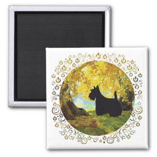 Scottish Terrier in Autumn Woods Magnets