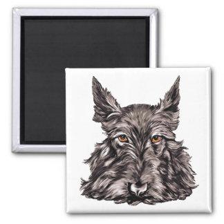 Scottish Terrier in Black Magnet