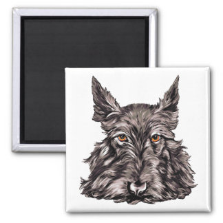 Scottish Terrier in Black Square Magnet
