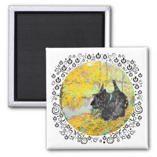 Scottish Terrier in Golden Woods Square Magnet