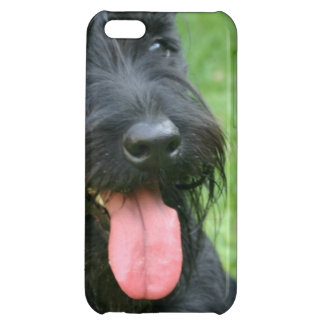 Scottish Terrier Cover For iPhone 5C
