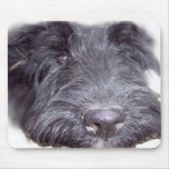 Scottish Terrier Mousepads