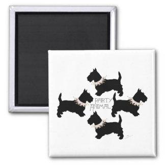 Scottish Terrier Party Fridge Magnet