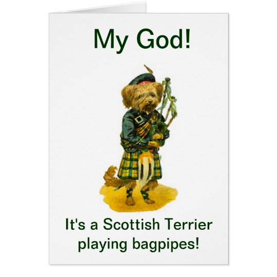 Scottish Terrier Playing Bagpipes Humour Birthday Card