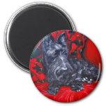 Scottish Terrier Portrait Haggis Fridge Magnet