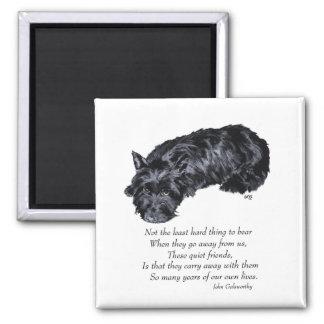 Scottish Terrier Rainbow Bridge Square Magnet