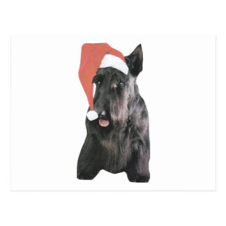 Scottish Terrier Santa Hat Christmas Postcard