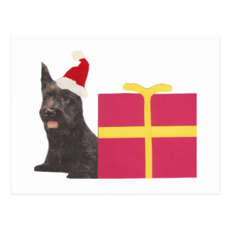 Scottish Terrier Santa Hat Postcard