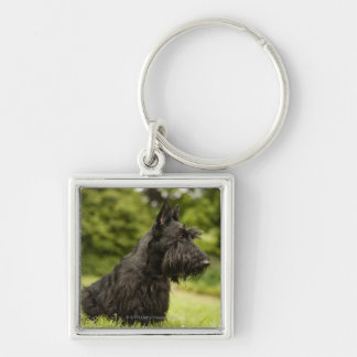Scottish Terrier Silver-Colored Square Key Ring