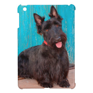 Scottish Terrier sitting by colorful doorway Cover For The iPad Mini