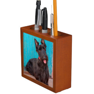 Scottish Terrier sitting by colorful doorway Desk Organiser