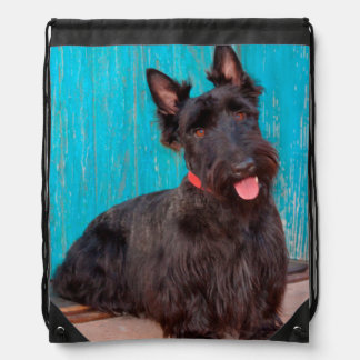 Scottish Terrier sitting by colorful doorway Drawstring Bag