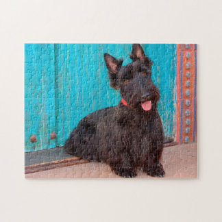Scottish Terrier sitting by colorful doorway Jigsaw Puzzle