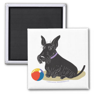 Scottish Terrier Square Magnet