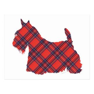 Scottish Terrier Stewart Tartan Postcard