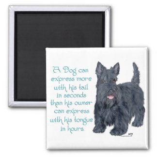 Scottish Terrier Wit & Wisdom - Talking Square Magnet