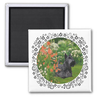 Scottish Terrier with Coral Flowers Square Magnet