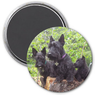 Scottish Terriers 7.5 Cm Round Magnet