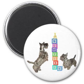 Scottish Terriers Alphabet Blocks Fridge Magnets