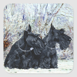 Scottish Terriers in Wintertime Square Sticker