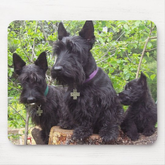 Scottish Terriers Mouse Mat