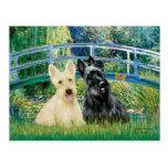 Scottish Terriers (two-BW) - Bridge Postcards