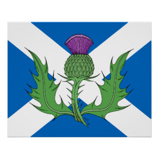 Scottish Thistle and Saltire Poster