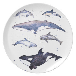 Scottish whales and dolphins on a plate