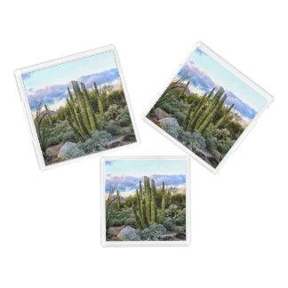 Scottsdale Succulent Sunset Acrylic Tray