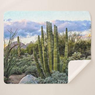 Scottsdale Succulent Sunset Sherpa Blanket
