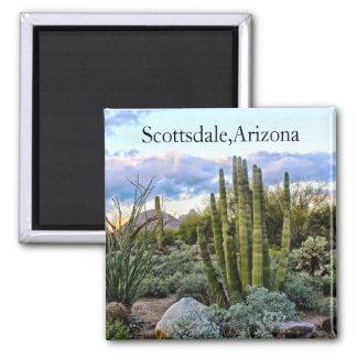 Scottsdale Succulent Sunset Square Magnet