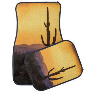 Scottsdale sunset before the storm car mat