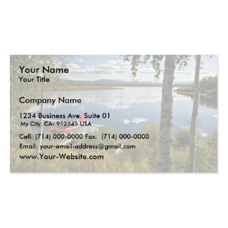 Scout at Kanuti Lake Double-Sided Standard Business Cards (Pack Of 100)