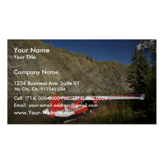 Scout in Kanuti Canyon Pack Of Standard Business Cards