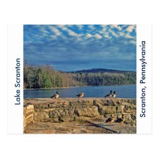 Scranton PA-Lake Scranton Post Card-Ducks Postcard