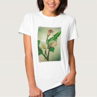 Scrap Book Callas Shirts