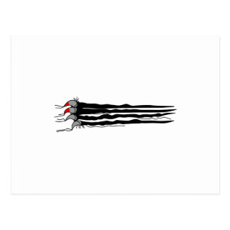 Scratch Claws Postcard