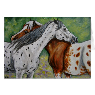 Scratch My Back, Appaloosa Horses Card