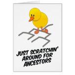 Scratchin' Around Greeting Card