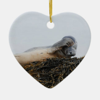 Scratching Seal Ornament