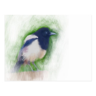 Scratchy Painting of a Scruffy Magpie Postcard