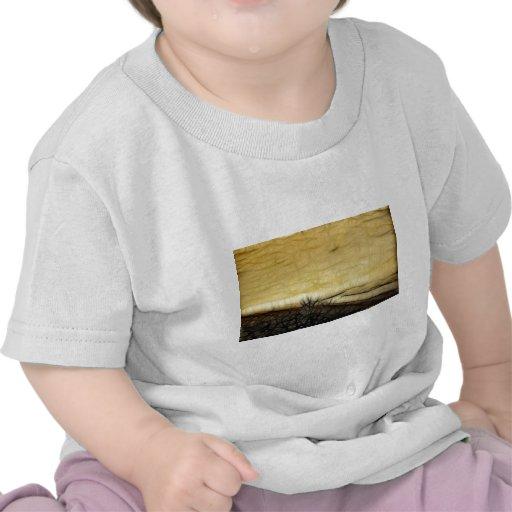 Scream Field T Shirts