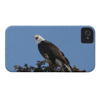 Screaming Eagle iPhone 4 Case