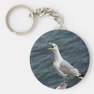 screaming seagull singing love songs basic round button key ring