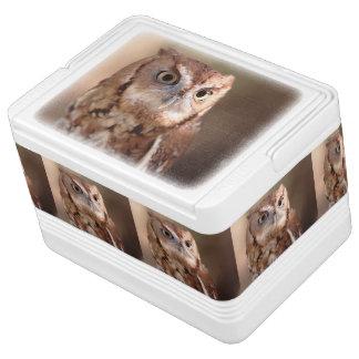 screech owl igloo cool box