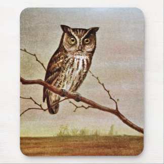 Screech Owl Vintage Illustration Mousepad