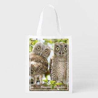 Screech Owls Chicks