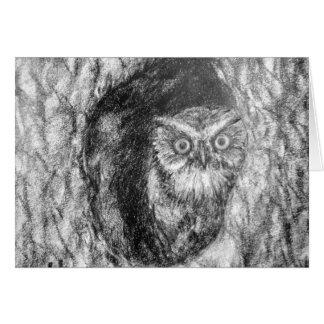 Screech Owls Owl Charcoal Black & White Drawing Greeting Card